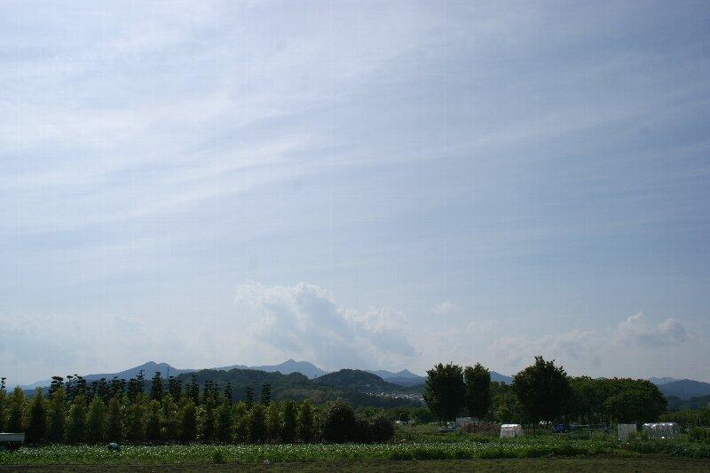 奥多摩への通り道☆好きな風景_a0122932_0355326.jpg