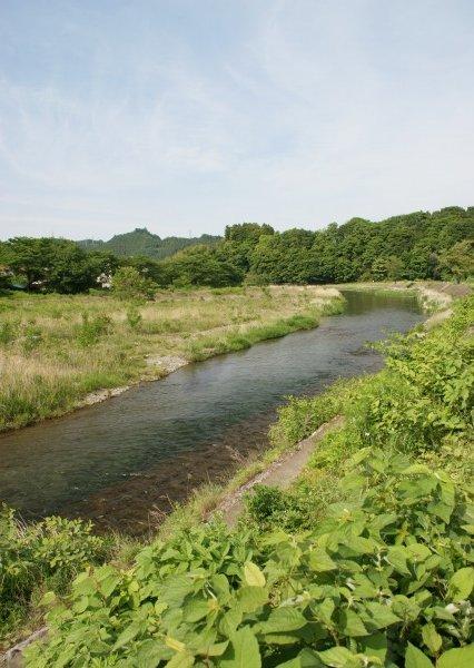 奥多摩への通り道☆好きな風景_a0122932_0372949.jpg