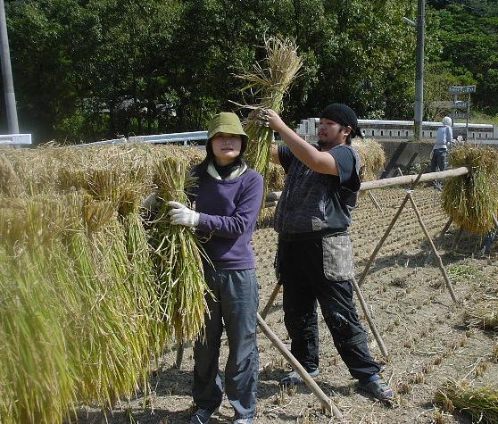 釉薬用の麦を焼く_b0135432_058194.jpg