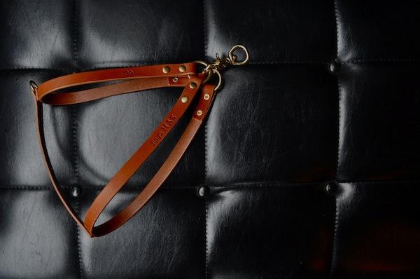 dog harness_b0172633_19424122.jpg