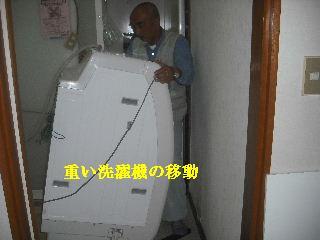 f0031037_19555169.jpg