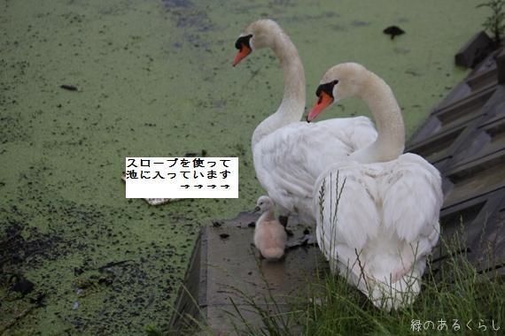 f0213651_173195.jpg