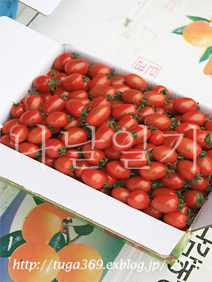 e0029472_20122482.jpg
