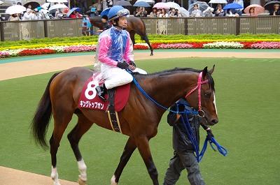 目黒記念は、最軽量の8歳馬キングトップガンが、嬉しい初重賞制覇_b0015386_20384224.jpg