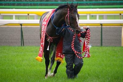 目黒記念は、最軽量の8歳馬キングトップガンが、嬉しい初重賞制覇_b0015386_2039166.jpg