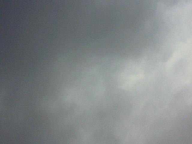 雨?曇り?_c0140599_11464390.jpg