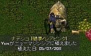 e0068900_151139.jpg