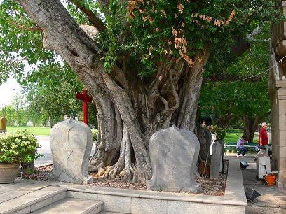 タイ出張2011年04月-週末旅行(I)-アユタヤ(1)-バンパイン宮殿と日本人街跡_c0153302_2265930.jpg