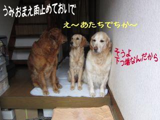 b0008217_20103523.jpg