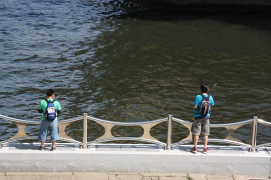 隅田川に魚戻る_f0055131_8192810.jpg