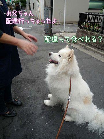 金曜日のおば散歩_c0062832_4125030.jpg
