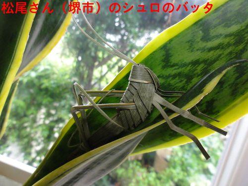 c0108460_1554891.jpg