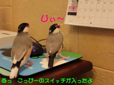 b0158061_20104698.jpg