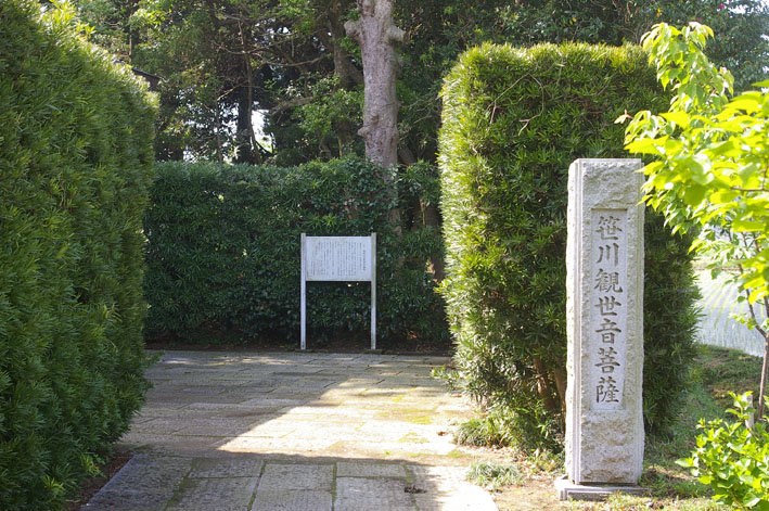 「入正醤油」の菩提寺西福院(東庄町)は牡丹の名所_c0014967_1745146.jpg