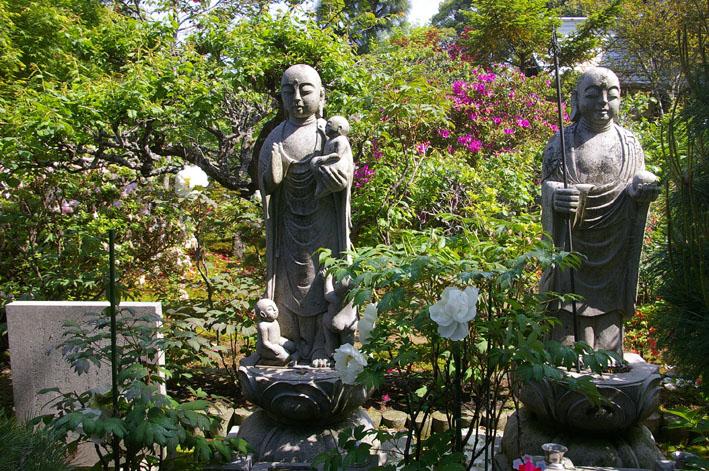 「入正醤油」の菩提寺西福院(東庄町)は牡丹の名所_c0014967_17464096.jpg