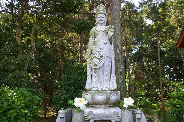 「入正醤油」の菩提寺西福院(東庄町)は牡丹の名所_c0014967_1746427.jpg