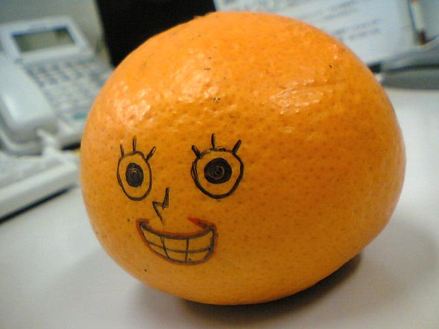 オレンジ食べたい。_d0096499_10544159.jpg