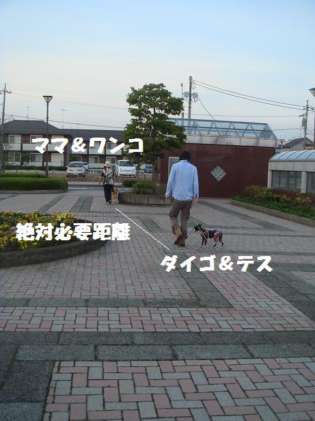 d0218999_1885038.jpg