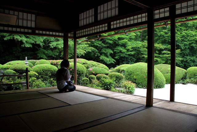 詩仙堂 サツキの庭_e0048413_19581638.jpg