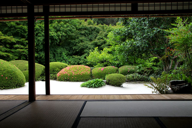 詩仙堂 サツキの庭_e0048413_19583093.jpg