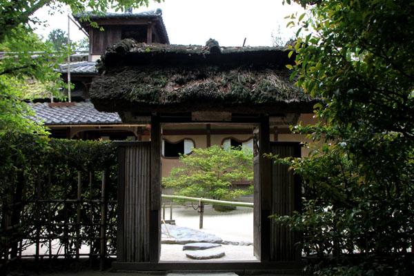 詩仙堂 サツキの庭_e0048413_1958497.jpg