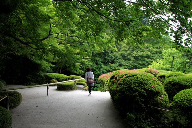 詩仙堂 サツキの庭_e0048413_19585394.jpg