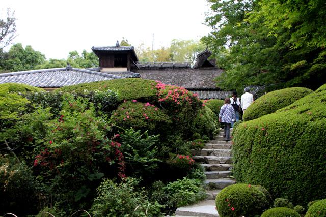 詩仙堂 サツキの庭_e0048413_1959183.jpg