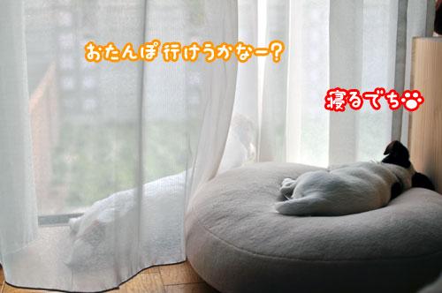 f0129214_921960.jpg