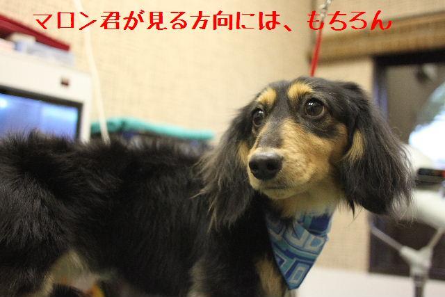 b0130018_12141292.jpg
