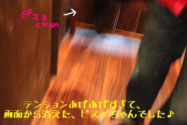 b0130018_12173656.jpg