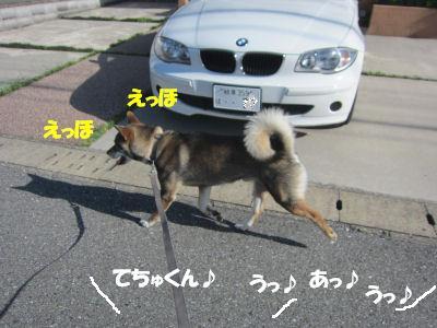 f0143123_20144166.jpg