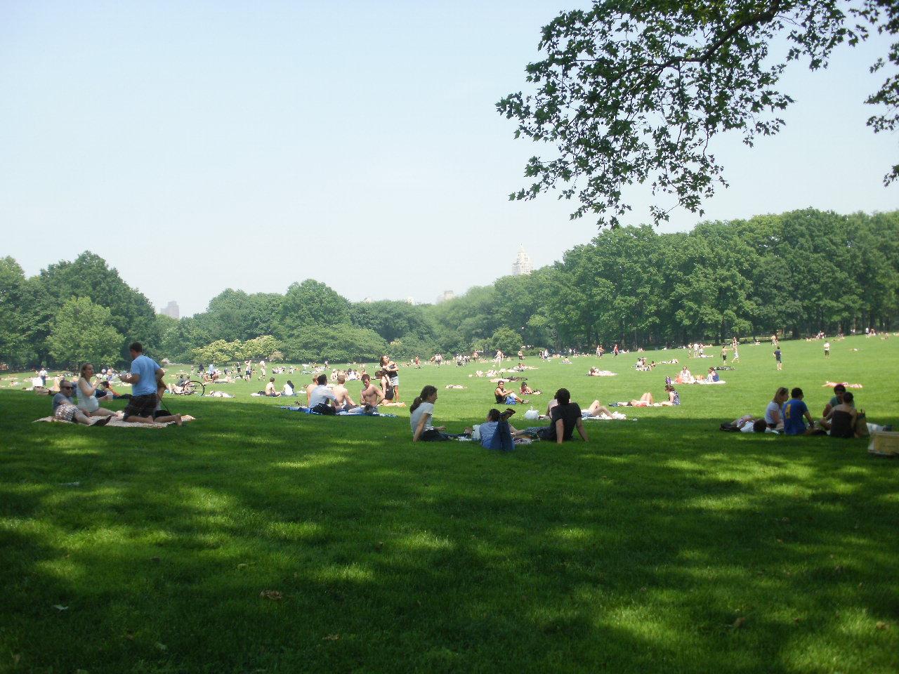 初夏のセントラルパーク_f0095325_20273265.jpg