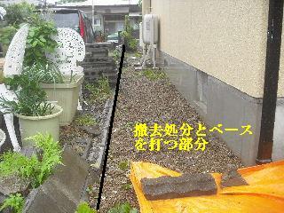 震災被害_f0031037_2181589.jpg