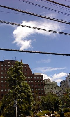 映画 「道頓堀川」をみた_b0217741_23581685.jpg