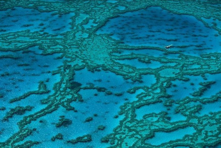 オメガが海洋映画製作をコラボレートします_f0039351_21511150.jpg