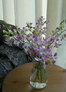花のある暮らし_b0194056_1852293.jpg