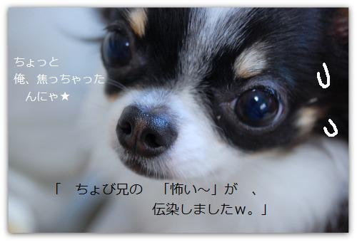b0112758_22272037.jpg