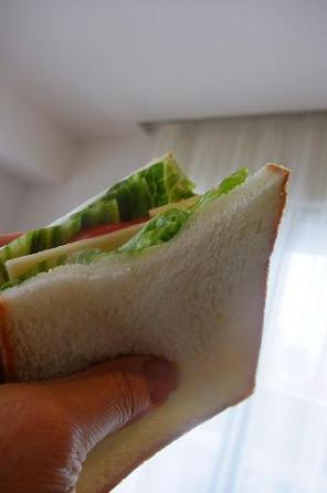 青春のサンドイッチ。_e0078359_9242029.jpg