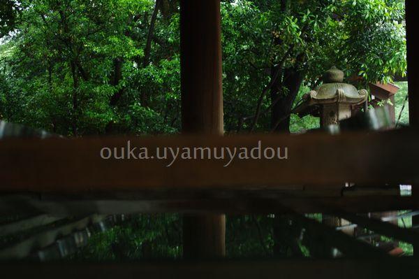 雨の靖国神社_a0157263_2261423.jpg