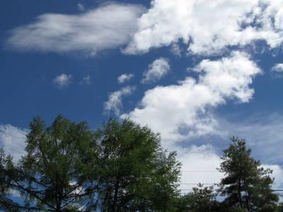 風に支配されています_a0129867_1425661.jpg