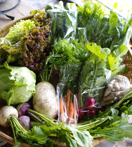 今週の野菜セット(5/31~6/4着) _c0110869_22581181.jpg