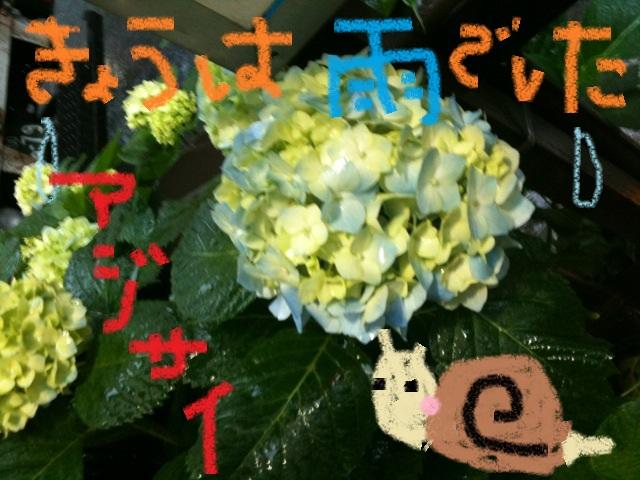 c0154876_15585517.jpg