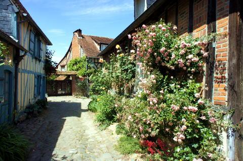 美しいバラの村「Gerberoy」(ジェルブロワ)_c0090198_322842.jpg