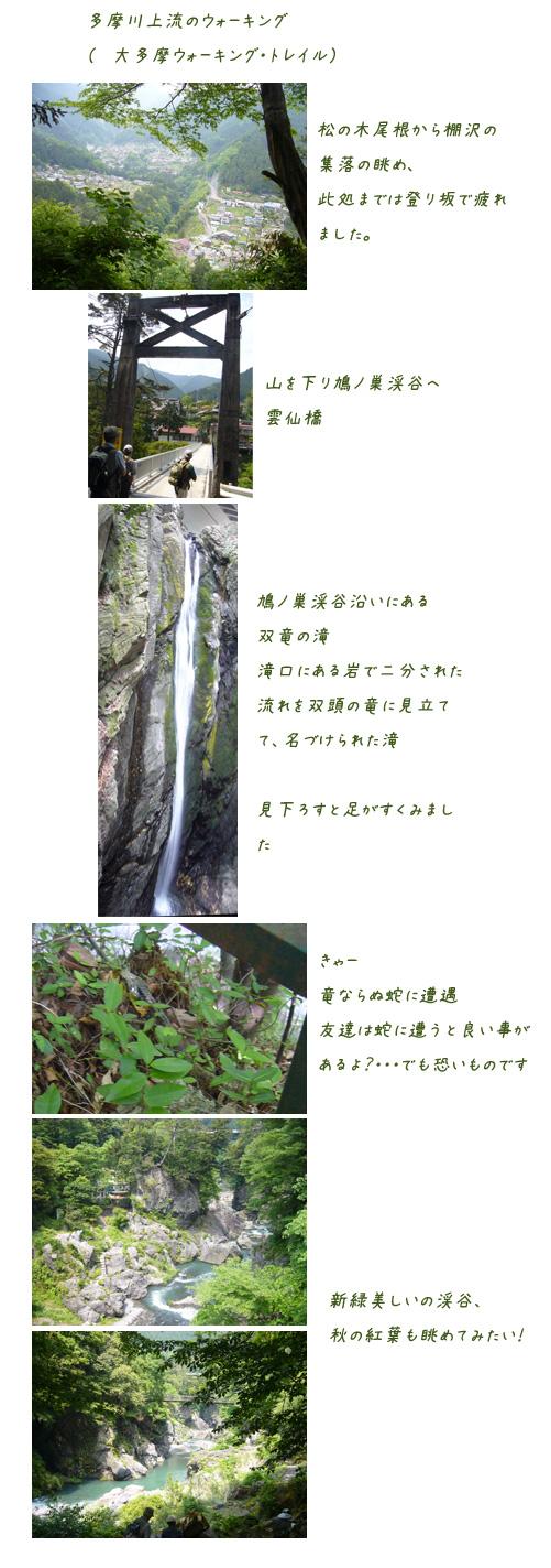 c0051105_2134475.jpg