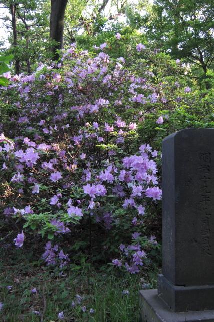 大塚  探訪「大塚先儒墓所」_b0061717_12415164.jpg