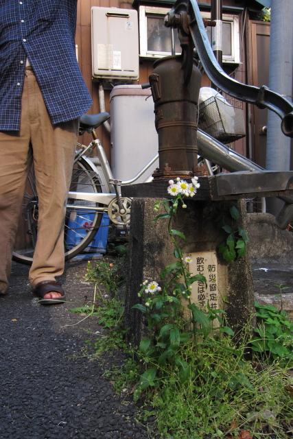 大塚  探訪「大塚先儒墓所」_b0061717_12491879.jpg