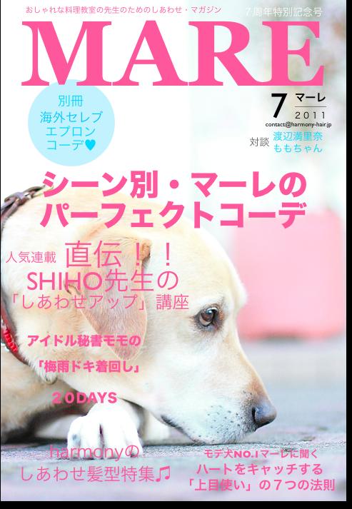 もっと、しあわせになれる雑誌_c0222817_23204198.jpg