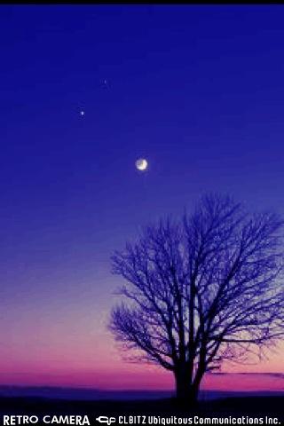 night_c0226145_2345838.jpg