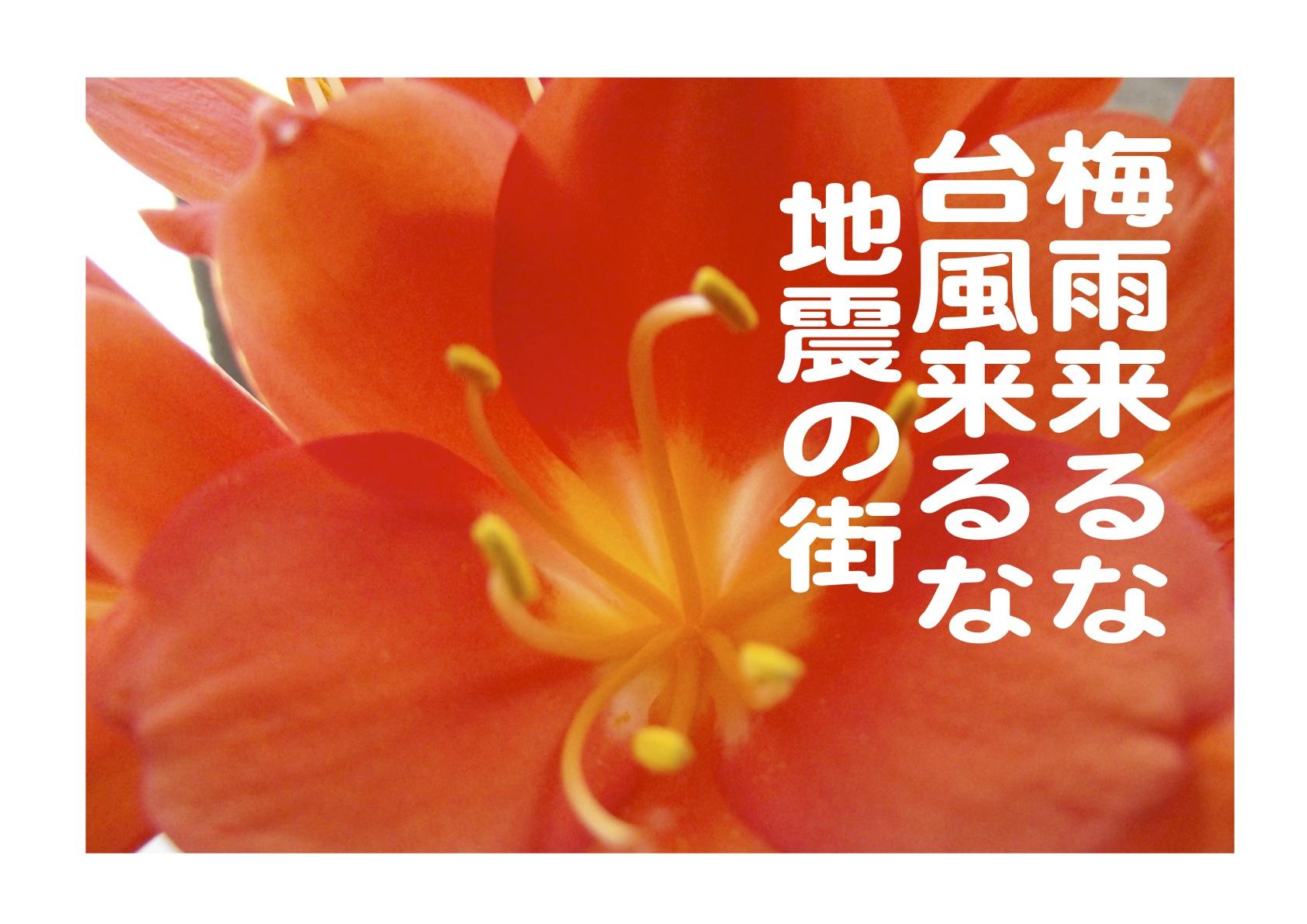 b0142158_1046379.jpg