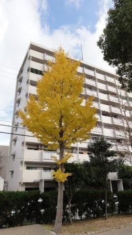 Fall_c0157558_9414174.jpg